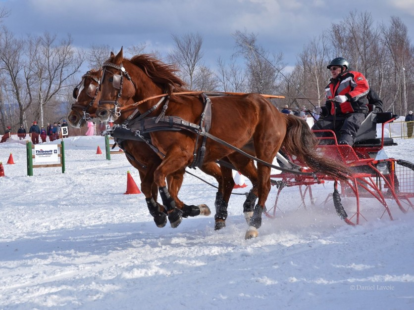 Winter derby