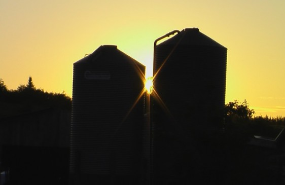 Domaine du Mouton d'Or - Domaine du Mouton d'Or - silos