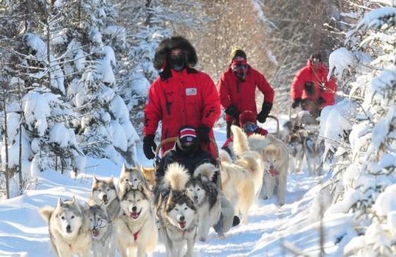 Les Internationaux de traîneau à chiens du Canada