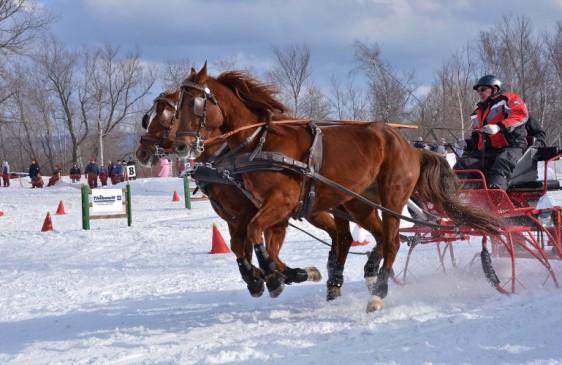Derby hivernal