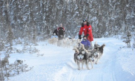 Winter adventure and dog sledding