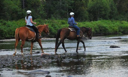 Horseback riding and Spa